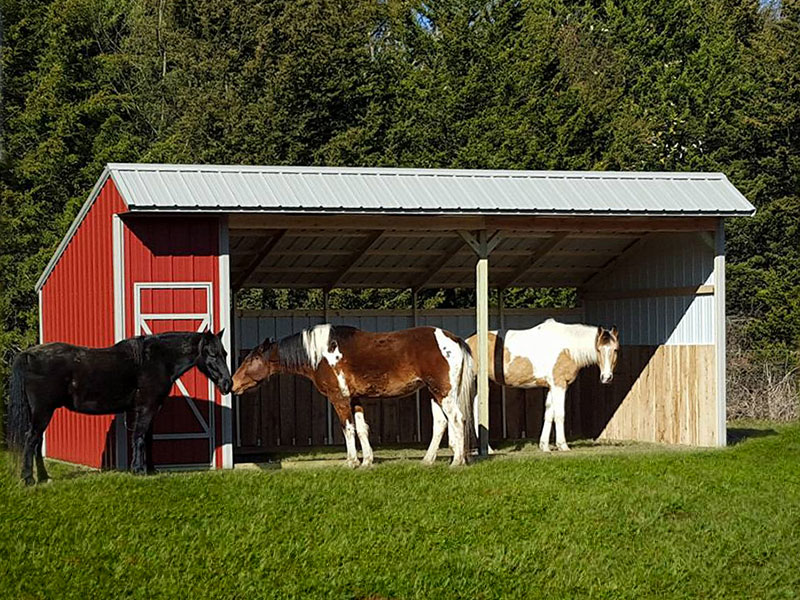custom horse barn made by crestwood storage barns in northwest arkansas